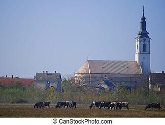 romanza, villaggio