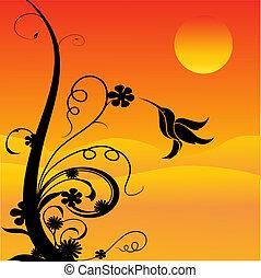 ronzio, fiori, uccello