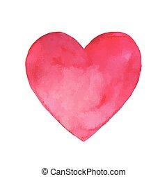 rosa, acquarello, vettore, cuore