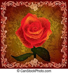 rosa, astratto, grunge, illustrazione