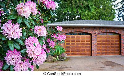 rosa, door., arbusto, legno, doppio, rododendro, garage