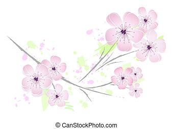rosa, floreale, fiore, disegno, -