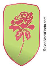 rosa, vettore, illustrazione