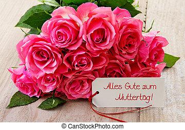 rose dentellare, giorno, scheda, madri