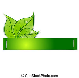 rugiada, carta, striscia, foglie, fondo, verde, gocce, bianco