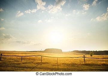 rurale, tramonto, sopra, campagna, campo