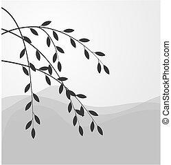 salice, silhouette, ramo