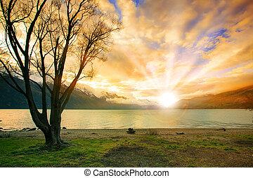 salita, dietro, zelanda, lago, sole, nuovo, neve, cielo scape, montagna, naturale, terra