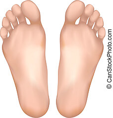 sano, feet.