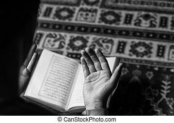 santo, musulmano, corano, islamico, libro, arabo, lettura, uomo