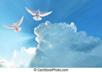 santo, volare, cielo, nuvoloso, bianco, colombe
