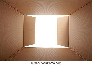 scatola, dentro, cartone, vista