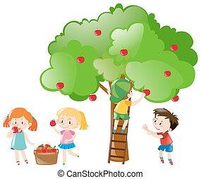 scegliere, albero, bambini, mele