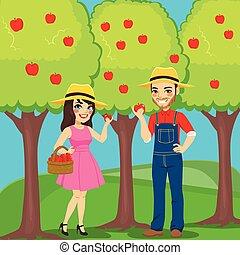 scegliere, mele, persone