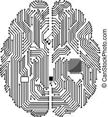 scheda madre, cervello
