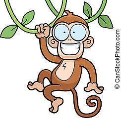 scimmia, appendere