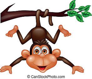 scimmia, felice, cartone animato