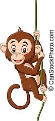 scimmia, ramo albero, appendere, bambino, cartone animato