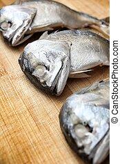 scombro, pesce steamed