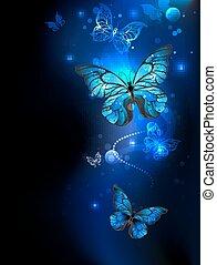 scuro, farfalla, blu