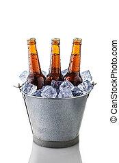 secchio, bottiglie birra, ghiaccio