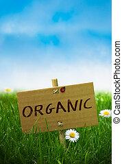 segno, organico, terra, naturale