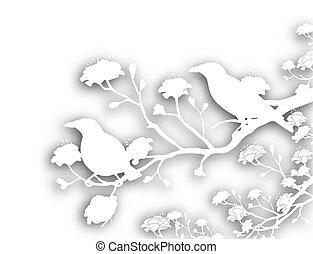 selvatico, disinserimento, uccelli