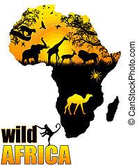 selvatico, manifesto, africa