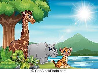 selvatico, paesaggio natura, animale, gioco