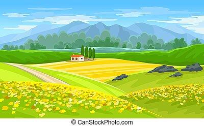 seme ravizzone, paesaggio, bello, fattoria, estate, fields.