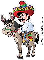sentiero per cavalcate, asino, messicano