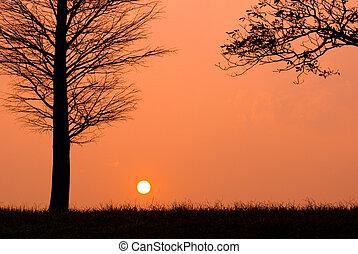 sera, tramonto, pacifico