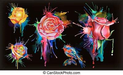 set, acquarello, vettore, nero, rose, fiori, icona