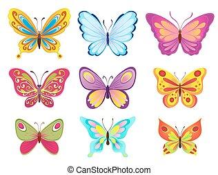 set, colorito, illustrazione, farfalle, vettore, white., cartone animato