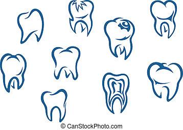 set, denti umani