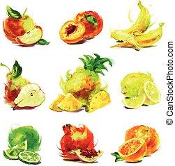 set, disegno, frutta