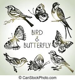 set, farfalla, uccello, illustrazioni, mano, disegnato