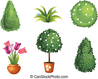 set, giardino, piante