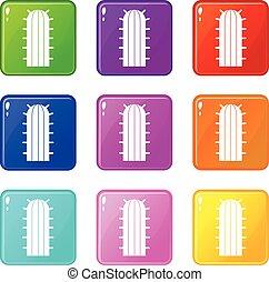 set, icone, cactus, cereus, 9, candicans