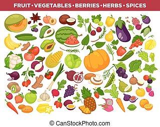 set, icone, verdura, vettore, spezie, frutte, bacche