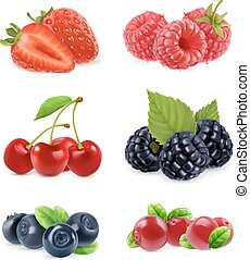 set, illustration., dolce, fruit., realistico, vettore, foresta, berry., 3d, icona
