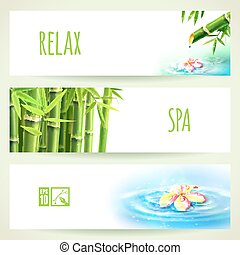 set, illustrazione, eps10, editable., banners., vettore, orizzontale, bambù