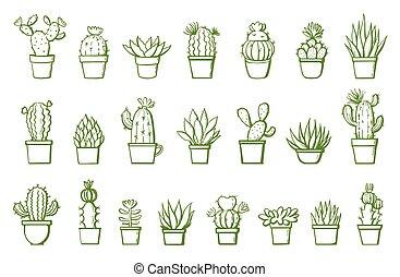 set, illustrazione, mano, disegnato, white., vettore, cactus