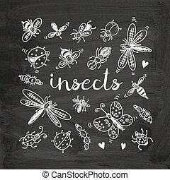 set, insetti, scarabocchiare