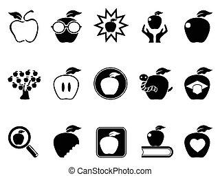 set, mela, icone