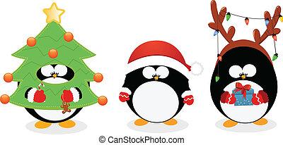 set, natale, pinguino