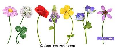 set, vettore, 3d, wildflowers., realistico, icona