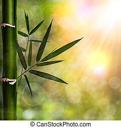 sfondi, astratto, naturale, bambù, fogliame