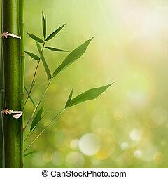 sfondi, foglie, naturale, bambù, zen