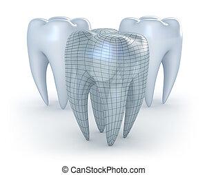 sfondo bianco, denti